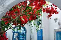 The picturesque village of Sidi Bou Said